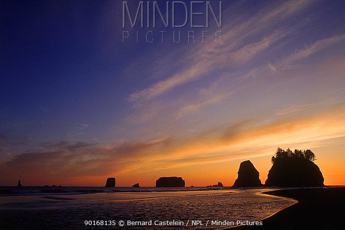 Sunset over Olympic NP coastline Washington, USA  -  Bernard Castelein/ npl