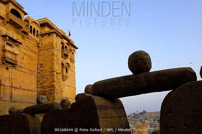 Jaisalmer Fort which stands 76m above the town of Jaisalmer and is enclosed by a 9km wall Rajasthan, India, 2006  -  Pete Oxford/ npl