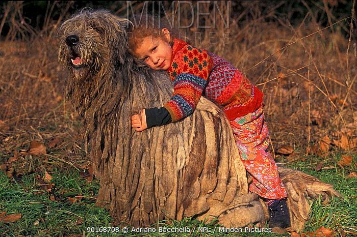 Girl hugging domestic dog, Bergamasco  -  Adriano Bacchella/ npl