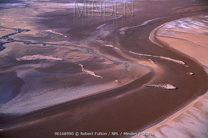 Aerial view of Salar de Uyuni salt flat sand bars and lakes, Bolivia, with flamingoes  -  Robert Fulton/ npl