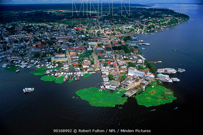 Aerial view of Tefe on banks of Amazon River, Brazil  -  Robert Fulton/ npl