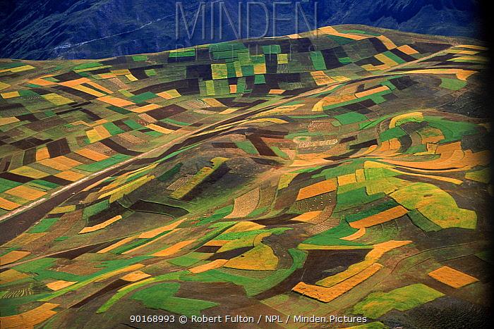 Aerial view, patchwork of arable fields, near Machu Picchu, Peru, South America  -  Robert Fulton/ npl