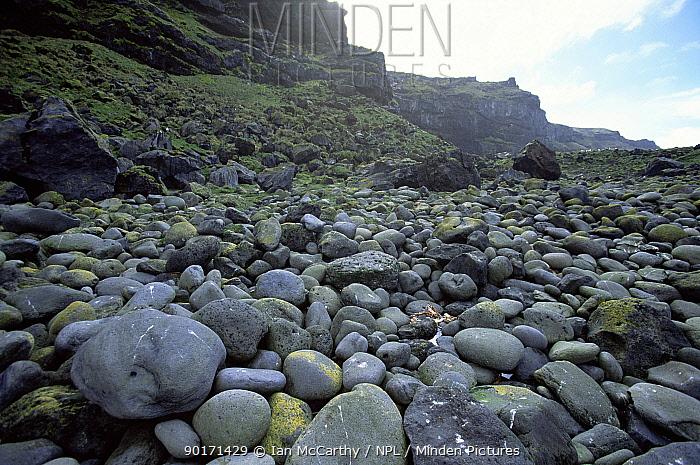 Boulders on beach, Marion Is, Prince Edward Island, sub-antarctica  -  Ian Mccarthy/ npl
