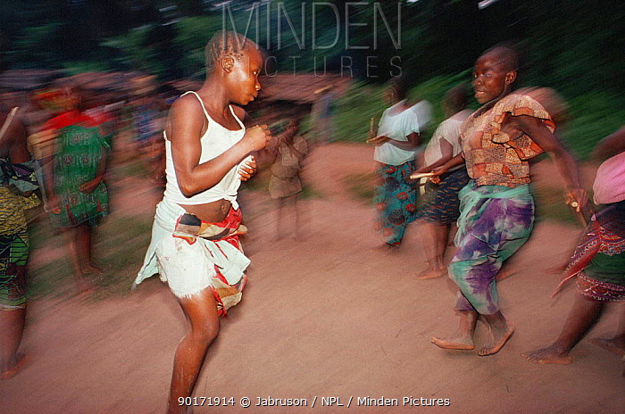 Dancing women at Kumbe circumcision ceremony, Epulu Itari Reserve, Democratic Republic of Congo (formerly Zaire)  -  Jabruson/ npl