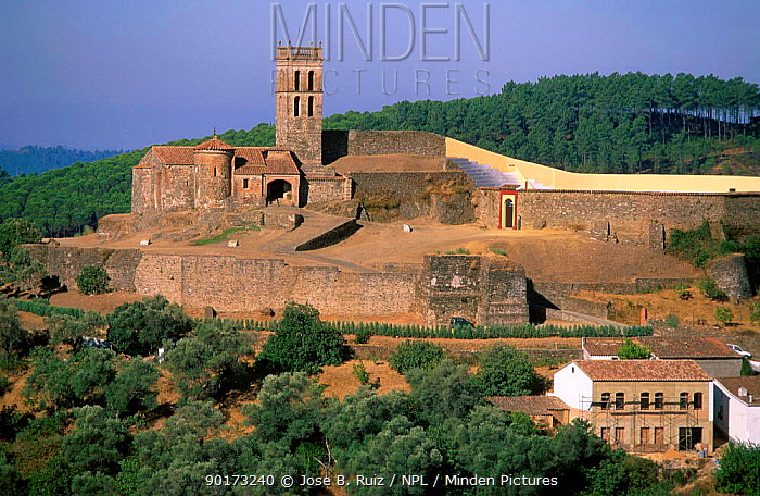 Village landscape with castle Almonaster Huelva Spain  -  Jose B. Ruiz/ npl