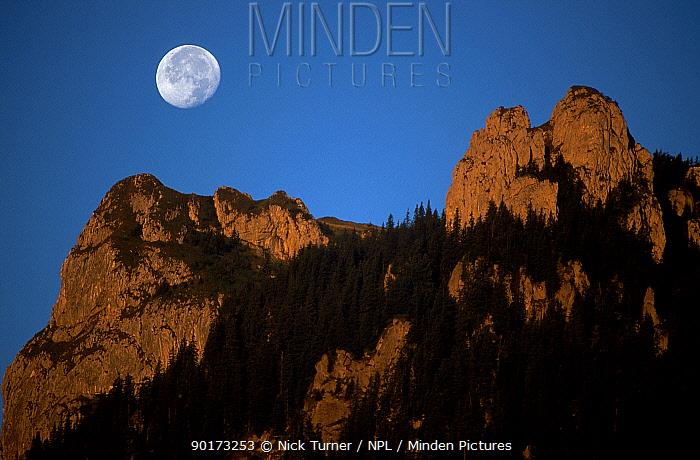 Moonset at dawn over Carpathian Mountains Romania 08, 99  -  Nick Turner/ npl