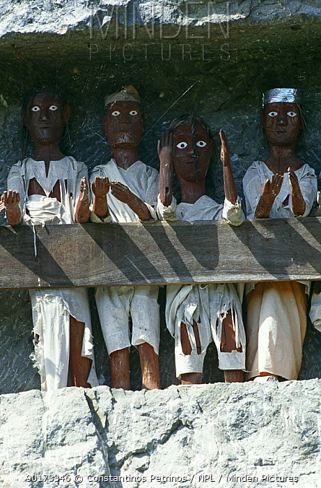 Tau Tau' effigies ('small person', 'person like') Tana Toraja, Central Sulawesi, Indonesia 2000  -  Constantinos Petrinos/ npl