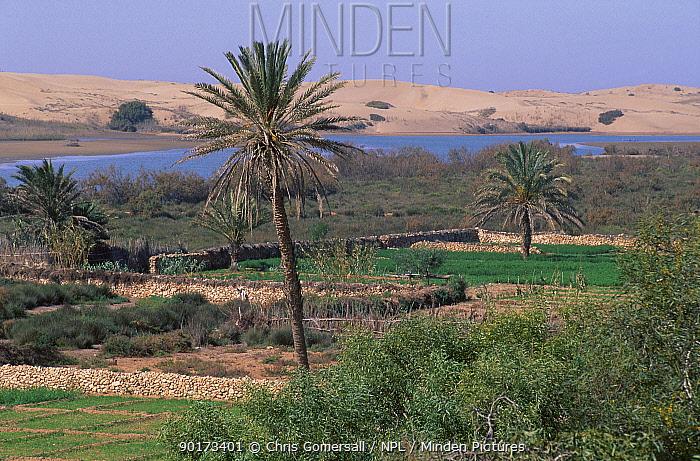 Oued-Massa Souss Massa NP Morocco  -  Chris Gomersall/ npl