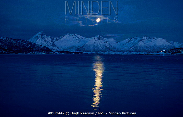 Moon over landscape Tysfjord, Norway  -  Hugh Pearson/ npl