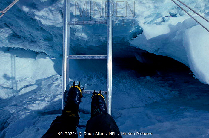 Crossing a crevasse ladder in the Khumbu Icefall on Mount Everest Nepal  -  Doug Allan/ npl