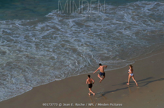 People running into sea Isle de Houat Brittany France  -  Jean E. Roche/ npl