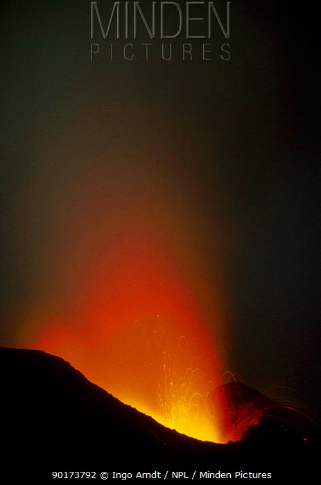 Stromboli volcano erupting dawn Italy  -  Ingo Arndt/ npl