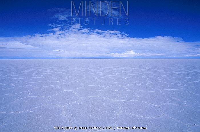 Polygon formations on surface of Uyuni Salt Pan Bolivia  -  Pete Oxford/ npl