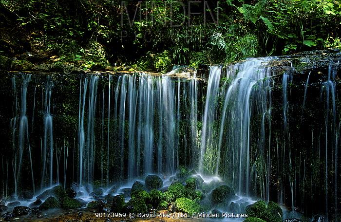 White thread waterfalls Shira-ito-no taki Karyuzawa Japan  -  David Pike/ npl