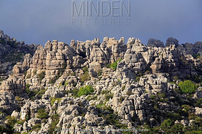Limestone rock formations at Torcal de Antequera National Park, Antequera, Malaga, Spain, Europe  -  Jose B. Ruiz/ npl