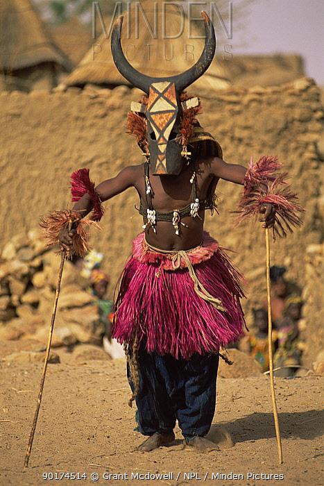 Dogon masked dancer, Mali, West Africa  -  Grant Mcdowell/ npl