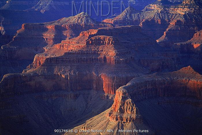 Grand Canyon (aerial view) Arizona, USA  -  David Noton/ npl