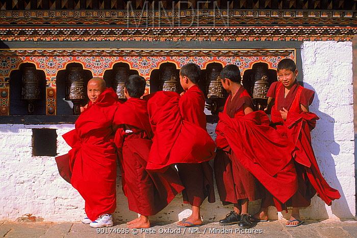 Monks turning prayerwheels Punakha festival, Bhutan  -  Pete Oxford/ npl