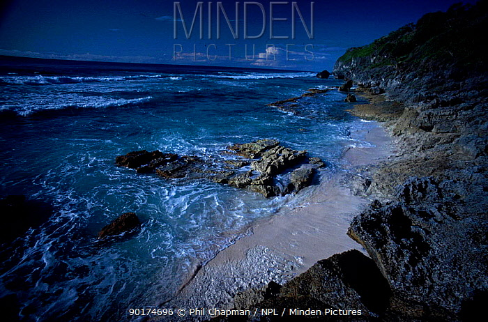 Herson Island coastal view Pacific Ocean  -  Phil Chapman/ npl