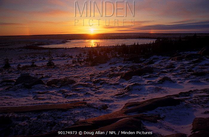 Dawn November light over tundra habitat near Churchill Manitoba Canada  -  Doug Allan/ npl