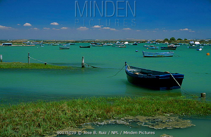 Tidal creek at high tide with boats Bahia de Cadiz Spain  -  Jose B. Ruiz/ npl