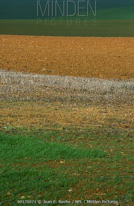 Intensive cereal production Lorraine Regional Park France  -  Jean E. Roche/ npl