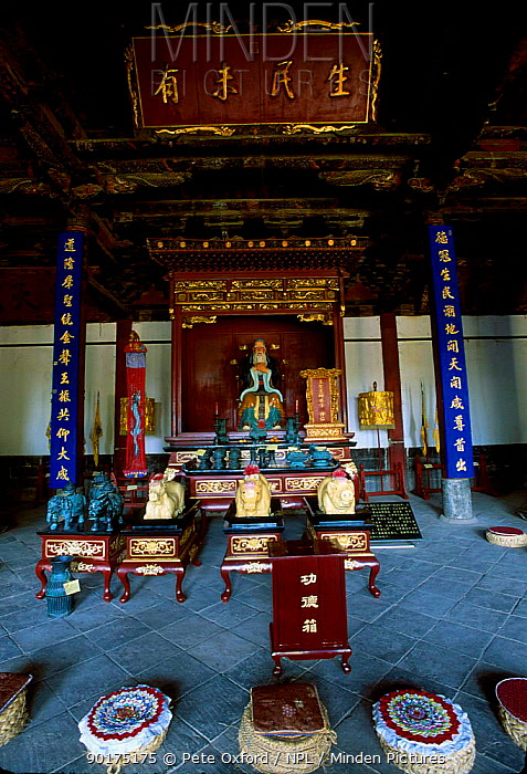 Inside of Confucius temple (1325) from the Yuan dynasty Jainshui town, Yunnan, China  -  Pete Oxford/ npl