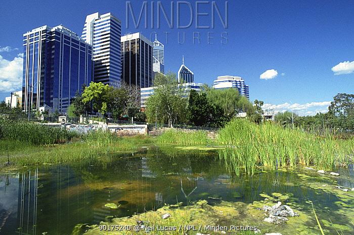 Wasteland in centre of Perth, Western Australia  -  Neil Lucas/ npl