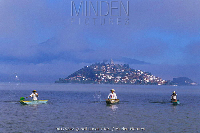 Duck hunter in traditional boat on Lake Patzcuaro, Mexico  -  Neil Lucas/ npl