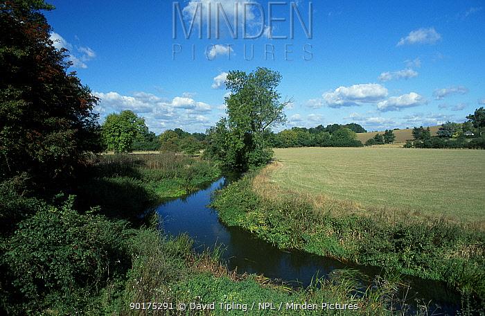 River Eden near Penshurst Kent England  -  David Tipling/ npl