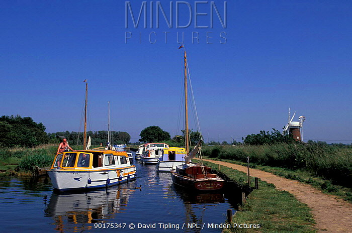 Boats on Norfolk Broads with windmill, Horsey, Norfolk, UK  -  David Tipling/ npl