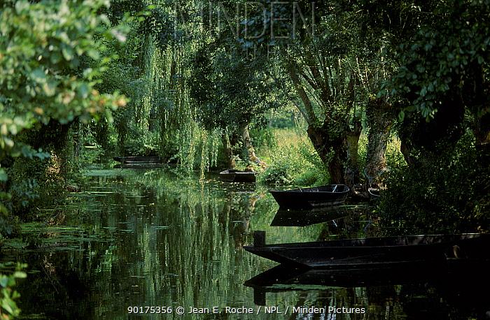 Boats moored along canal under willow trees Marais poitevin France  -  Jean E. Roche/ npl