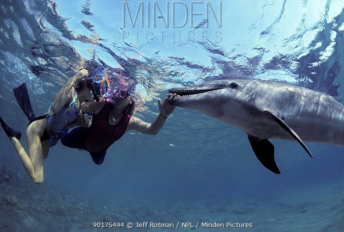Child and therapist interact with Bottle nosed dolphin (Tursiops truncatus) Eilat, Israel, Red Sea  -  Jeff Rotman/ npl