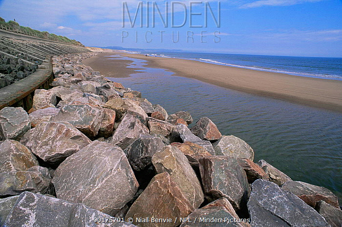 Coastal protection wall in place, to prevent further cliff and coastal erosion, Montrose, Scotland  -  Niall Benvie/ npl