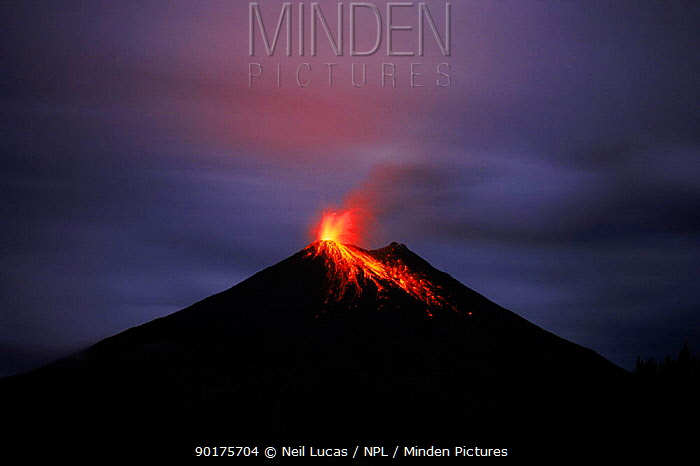 Lava flows from errupting Arenal volcano at night Costa Rica  -  Neil Lucas/ npl