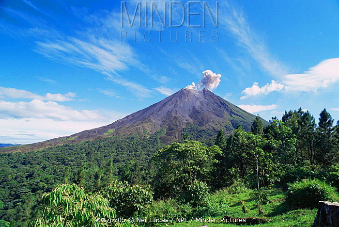 Active Arenal volcano erupting with cloud of ash, Costa Rica  -  Neil Lucas/ npl