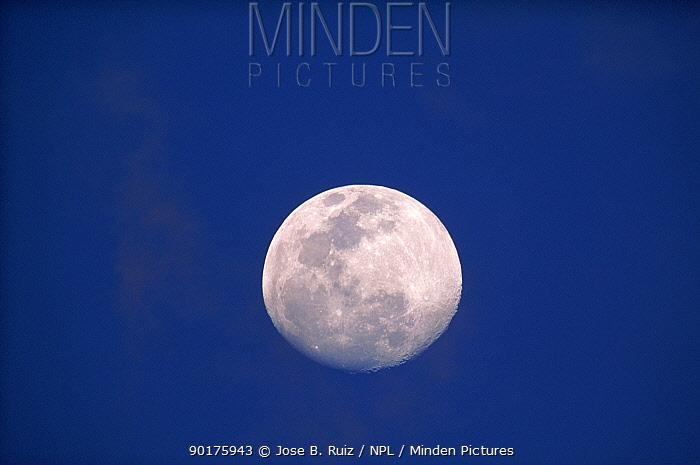 Full Moon over Etosha NP, Namibia  -  Jose B. Ruiz/ npl