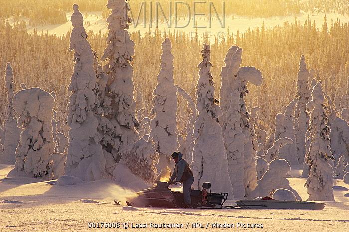 Man on snowmobile, going through snow covered trees, Finland  -  Lassi Rautiainen/ npl