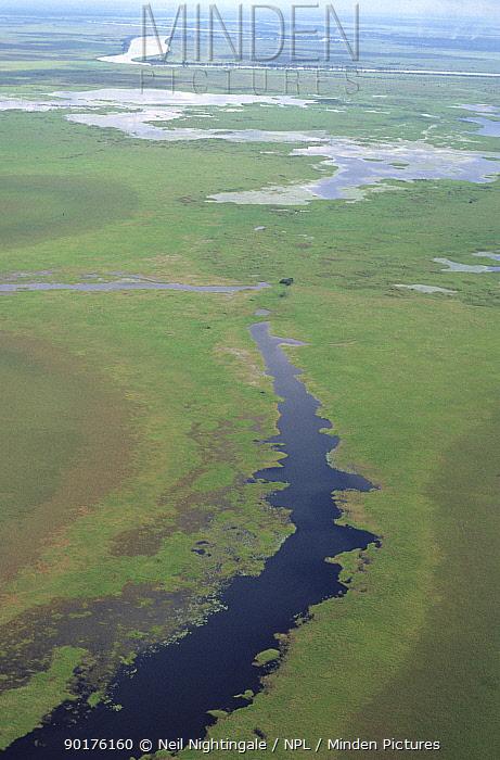 Aerial view of Sepik River floodplain, Irian Jaya, West Papua, Papua New Guinea (West Papua)  -  Neil Nightingale/ npl