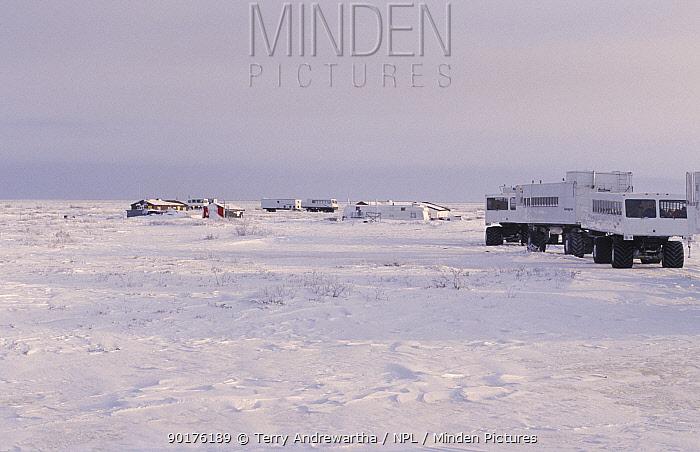 Tundra buggies at Snow Goose camp, Churchill, Manitoba, Canad  -  Terry Andrewartha/ npl
