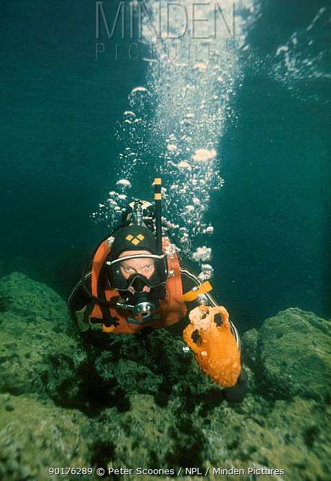 Diver carrying amphora up from seabed Mediterranean  -  Peter Scoones/ npl
