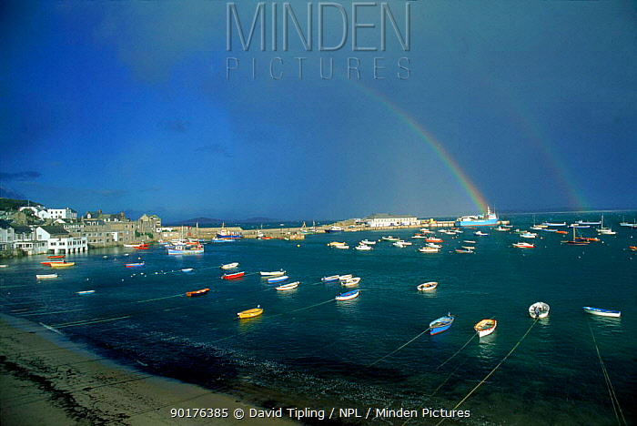 Rainbow over Hugh Town, St Mary's, Scilly Isles, UK, Europe  -  David Tipling/ npl