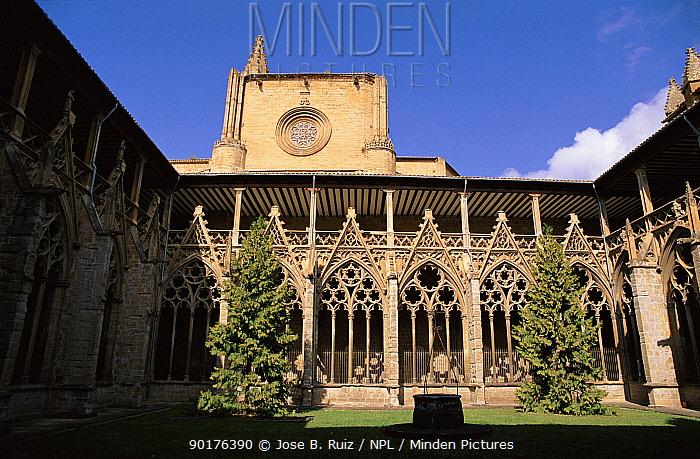 Pampolona cathedral, Navarra, Spain, Europe  -  Jose B. Ruiz/ npl