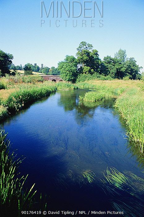 River Eden in Kent, summer, UK, Europe  -  David Tipling/ npl