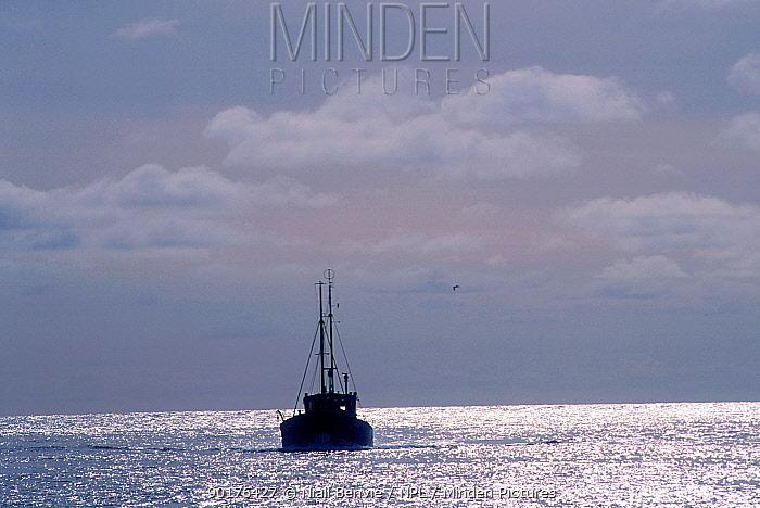 Commercial fishing boat, St Kilda, Scotland  -  Niall Benvie/ npl