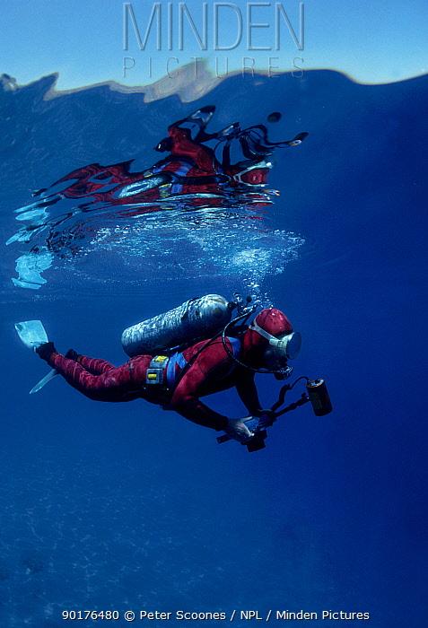 Diver with underwater camera Tropics  -  Peter Scoones/ npl