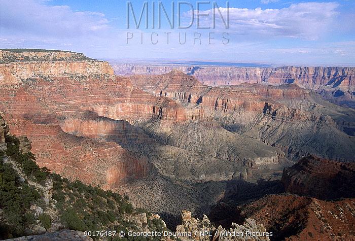 Grand canyon from North Rim Arizona USA  -  Georgette Douwma/ npl