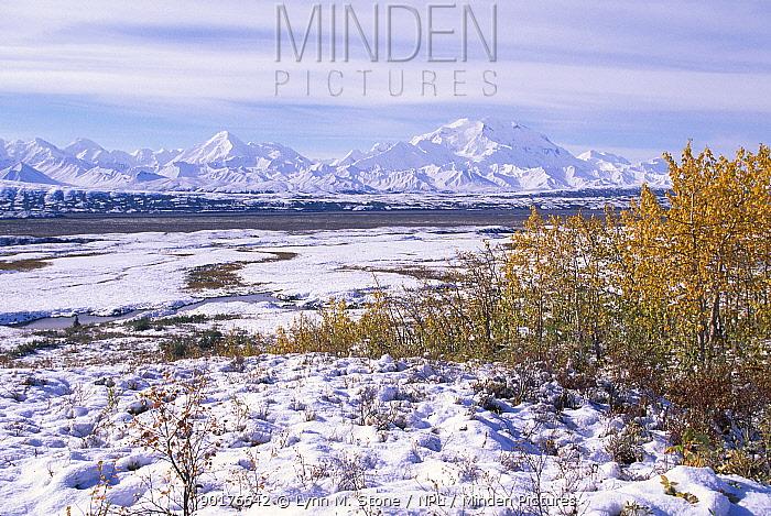 Mount McKinley Denali NP Alaska USA  -  Lynn M. Stone/ npl