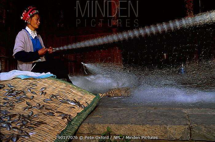 Bai woman repairing fishing net with cat playing, Dali town, Yanna, China (Ethnic minority)  -  Pete Oxford/ npl