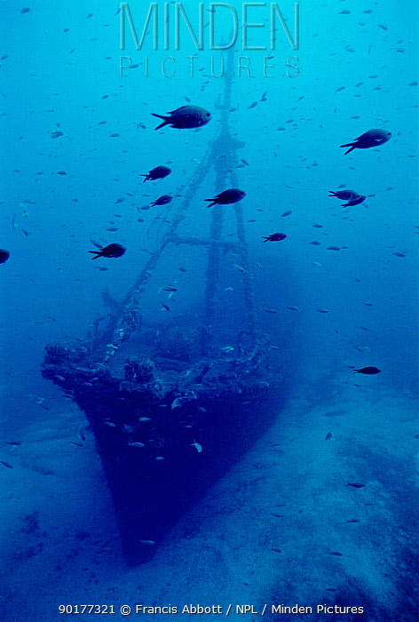 Wreck of fishing vessel 'Santa', scuppered by Spanish authorities in '83 following smuggling scandal Off coast of Menorca  -  Francis Abbott/ npl
